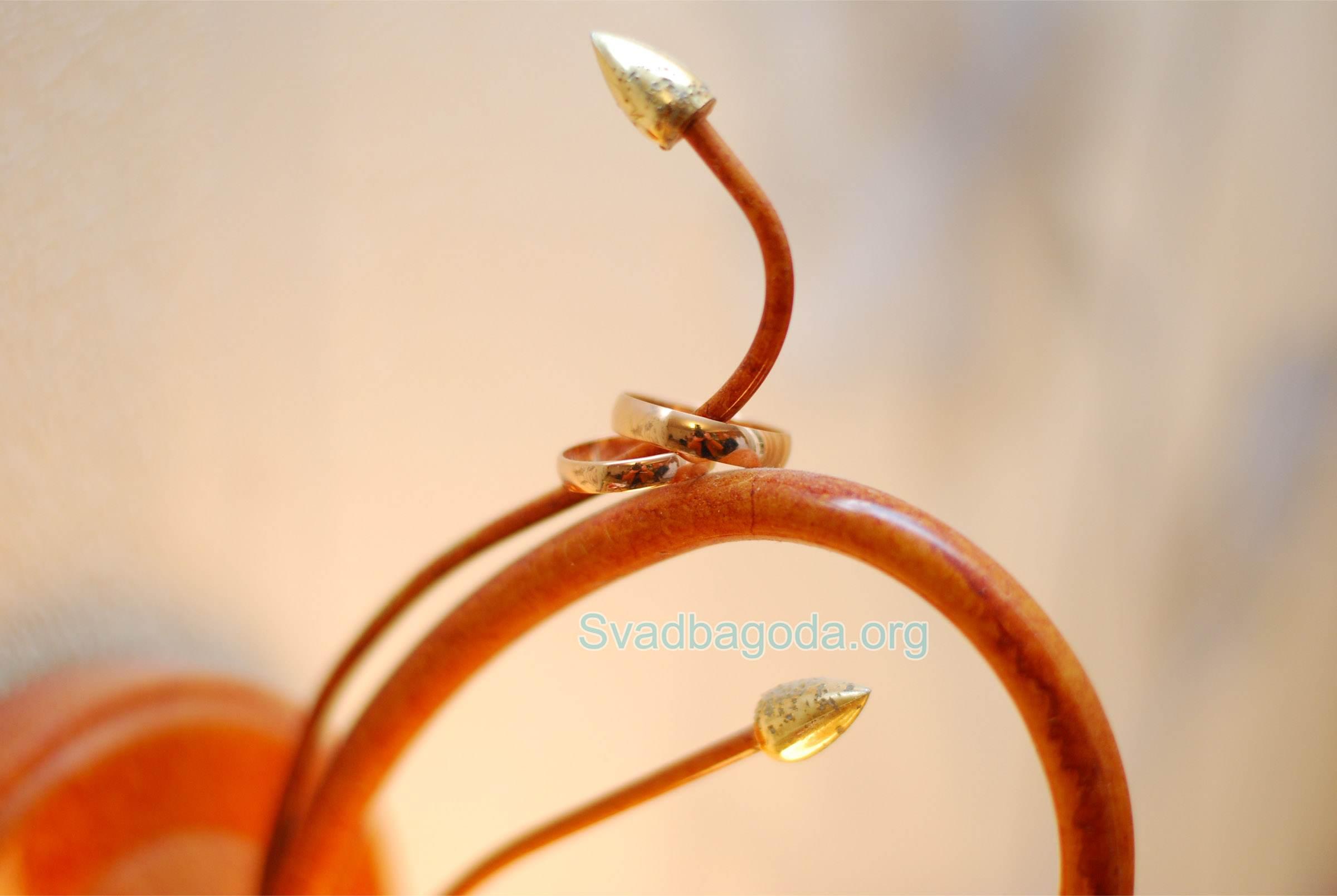 красивые обручальные кольца для ЗАГСа г. Хойники